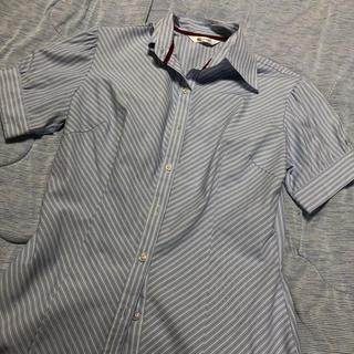 ストライプシャツ半袖(シャツ/ブラウス(半袖/袖なし))