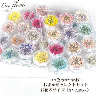 ayana様/!高品質!ドライフラワー12色mix/3セット(ドライフラワー)