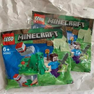 Lego - レゴ LEGO 30393 2個セット マインクラフト