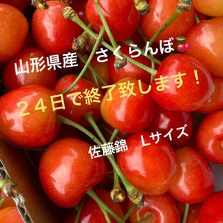 山形県産 さくらんぼ 佐藤錦 1キロ(フルーツ)