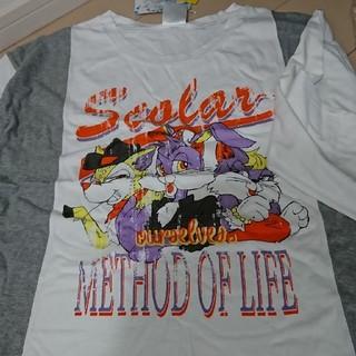 スカラー(ScoLar)の2018年(?)福袋Tシャツ2枚セット バラ売り可(Tシャツ(長袖/七分))