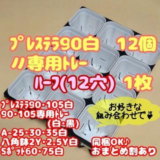 【スリット鉢】プレステラ90白12個+専用システムトレー:ハーフ1枚 多肉植物(プランター)