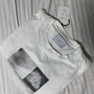 サンシー(SUNSEA)のstein ロンT(Tシャツ(長袖/七分))