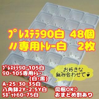 【スリット鉢】プレステラ90白48個+専用システムトレー白2枚 多肉植物(プランター)