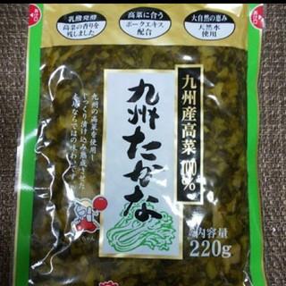 九州産高菜100%使用 九州たかな220g(漬物)