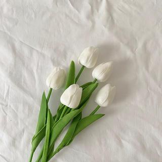 フランフラン(Francfranc)のimport artificial flower 5pic(チューリップ 造花)(その他)