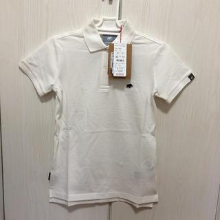 マムート(Mammut)のマムート  ポロシャツ  レディースS(ポロシャツ)