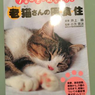 本 老ネコさんの衣食住 老猫さんの衣食住(住まい/暮らし/子育て)