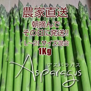【クール便】太 アスパラ 1kg(野菜)