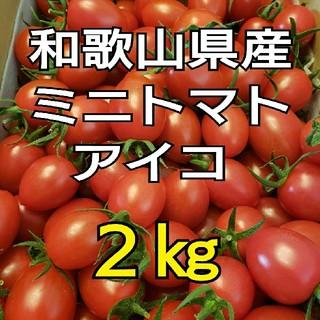 2㎏ 和歌山県産 ミニトマト アイコ(野菜)