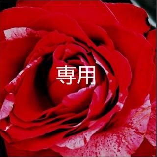 ワコール(Wacoal)の最終SALE様♡専用(その他)