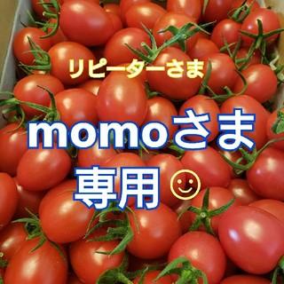 2kg momoさま専用です☺ ミニトマト(野菜)