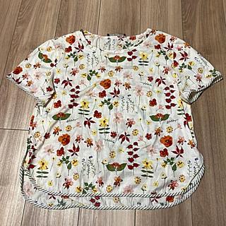 マックスマーラ(Max Mara)のマックスマーラーmaxmara 花柄Tシャツ カットソー ブラウス(カットソー(半袖/袖なし))