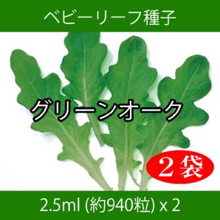 ベビーリーフ種子 B-01 グリーンオーク 2.5ml 約940粒 x 2袋(野菜)