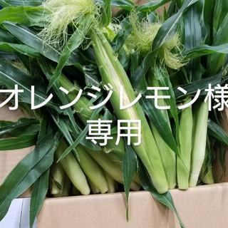 ヤングコーン🌽朝採り発送🌽(野菜)