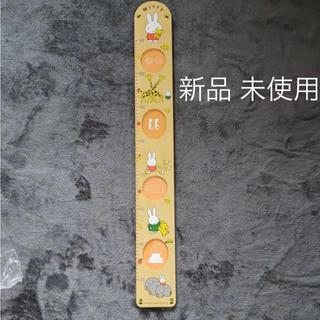 ファミリア(familiar)のミッフィー 木製 身長計 フォトフレーム(フォトフレーム)