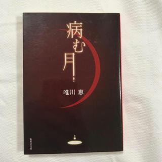 病む月(文学/小説)