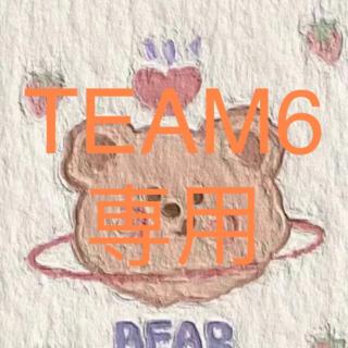 TEAM6 専用(その他)