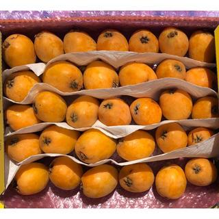 無農薬 ビワ 大粒30個(1kg)以上(フルーツ)