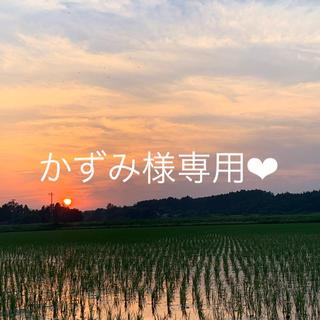 【かずみ様】専用(米/穀物)