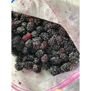 桑の実 マルベリー 無農薬栽培ジャム用 2kg(フルーツ)