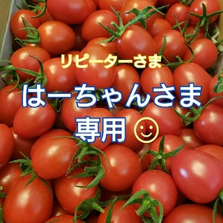 3㎏ はーちゃんさま専用です☺️ ミニトマト(野菜)