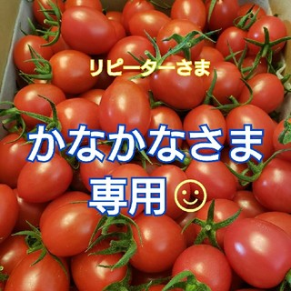 4kg かなかなさま専用です☺ ミニトマト(野菜)
