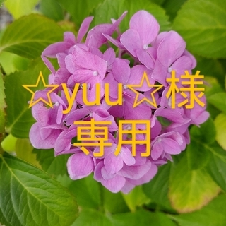 ☆yuu☆様専用(その他)