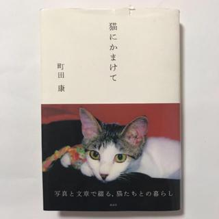 猫にかまけて(文学/小説)