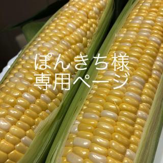 ぽんきち様専用ページ(野菜)