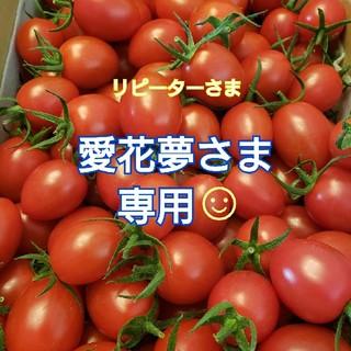 4kg 愛花夢さま専用です☺ ミニトマト(野菜)