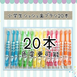 小学生シュシュ歯ブラシ20本(歯ブラシ/歯みがき用品)
