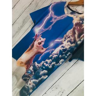 ミルクボーイ(MILKBOY)の猫終焉轟雷鳴。爆限定最強映えPRE猫裏原宿総柄Tシャツ FR2 doublet(Tシャツ/カットソー(半袖/袖なし))