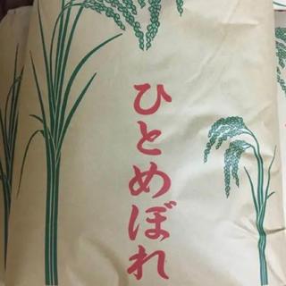 【Blue様 年契専用】令和1年度ひとめぼれ精米25kg(米/穀物)