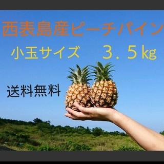 沖縄県西表島産ピーチパイン小玉サイズ約3.5㎏(6~9玉)(フルーツ)