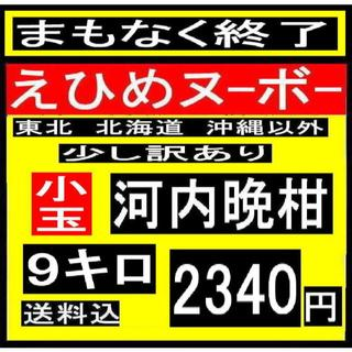 ★ 小か8 えひめヌーボーの  少し訳あり 小玉河内晩柑 9キロ(フルーツ)