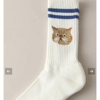 ジャーナルスタンダード(JOURNAL STANDARD)の猫 靴下(ソックス)