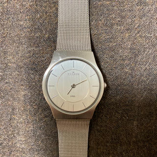 SKAGEN - SKAGEN スカーゲン 腕時計 シルバー 233SSS