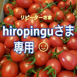 4kg hiropinguさま専用です☺️ ミニトマト(野菜)