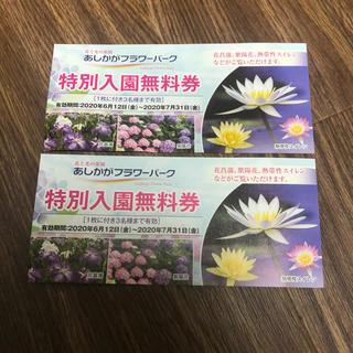 足利フラワーパーク 入園無料券 2枚(その他)
