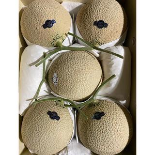 静岡 高級アールスメロン白5玉 隔離栽培 アローマ(フルーツ)