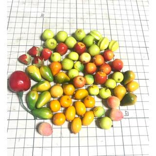 フェイクフルーツセット 中古 南国フルーツあり(その他)