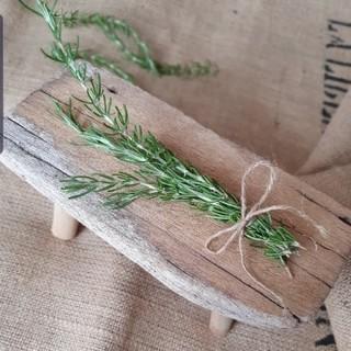フランフラン(Francfranc)のローズマリー 精油 切り枝 ドライフラワー スワッグ インテリア ハーブ 挿し木(ドライフラワー)