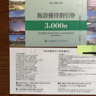 エムアンドエム(M&M)の三井松島ホールディングス 株主優待券(その他)