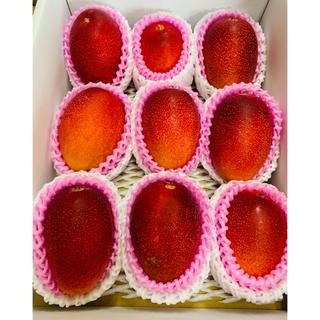 送料無料 完熟マンゴー 2kg 宮崎産 お中元 のし 6玉〜10玉 ギフト 安い(フルーツ)