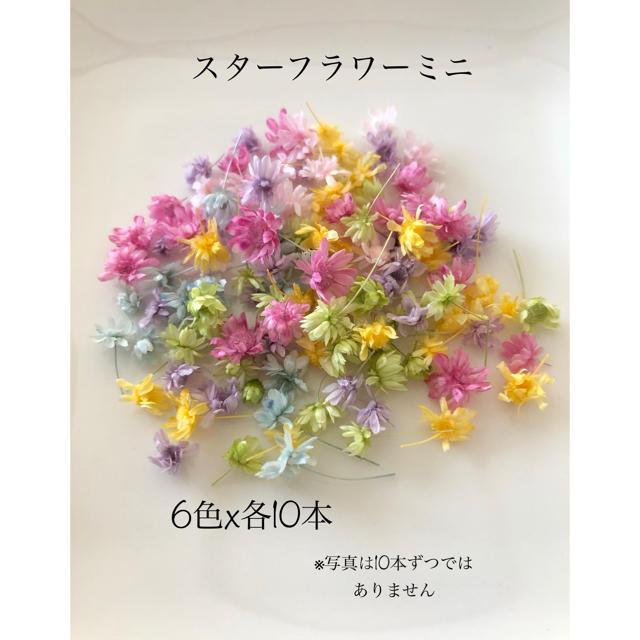 【ヘッドのみ】スターフラワー・ミニ6色アソート ハンドメイドのフラワー/ガーデン(ドライフラワー)の商品写真