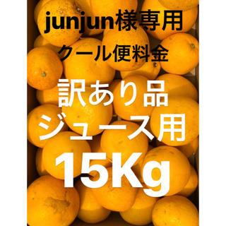 junjun様専用 訳ありジュース用宇和ゴールド クール便追加料金(フルーツ)