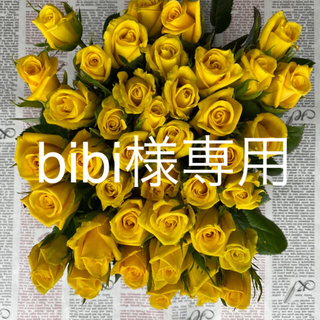 bibi様専用 ゴールドラッシュ、ユーカリ 60本 30センチ(その他)