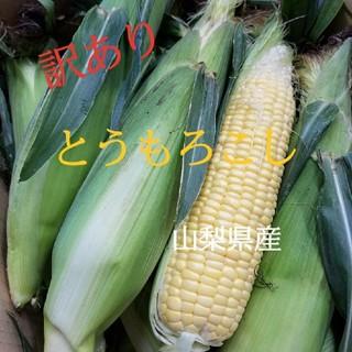 🌽とうもろこし🌽山梨県産(訳あり)(野菜)