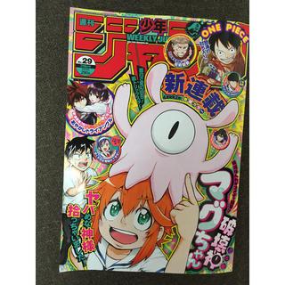 週刊少年ジャンプ29号(漫画雑誌)